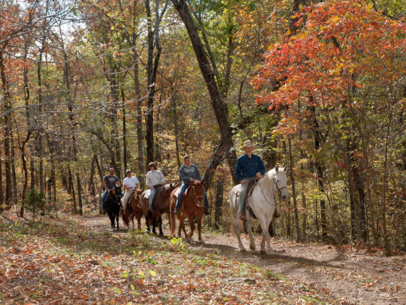 Trail riding in the Upper Buffalo Area